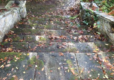 Stone steps before cleaning